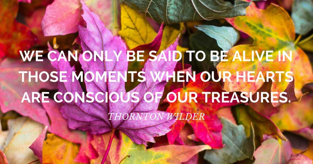 gratitude quote: We can only be said to be alive in those moments when our hearts are conscious of our treasures. ~Thornton Wilder
